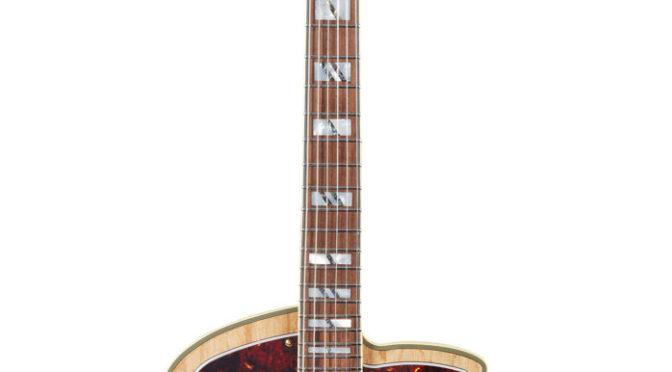 D'Angelico Guitars