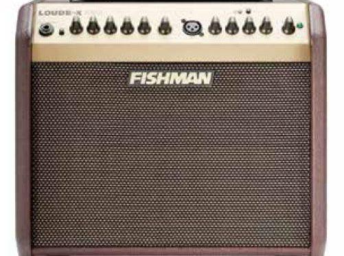fishman mini